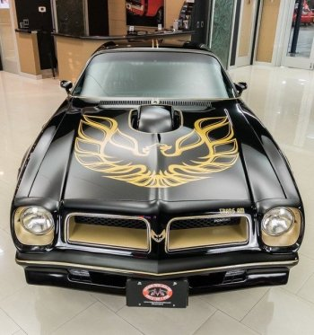 A 50th anniversary Pontiac Firebird Trans Am. Note the difference in the 1976 grille from the 1977 facade in the below screenshot from Smokey and the Bandit.