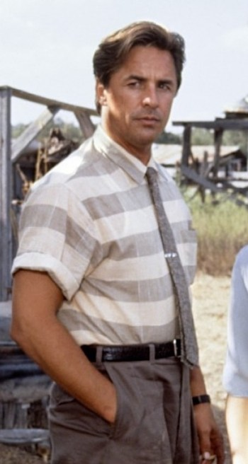 Don Johnson as Harry Madox in The Hot Spot (1990)