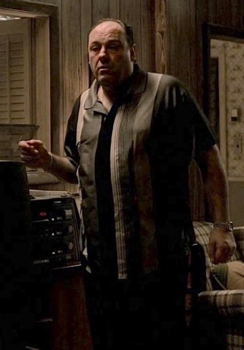 "James Gandolfini as Tony Soprano on The Sopranos (Episode 6.01: ""Members Only"")"