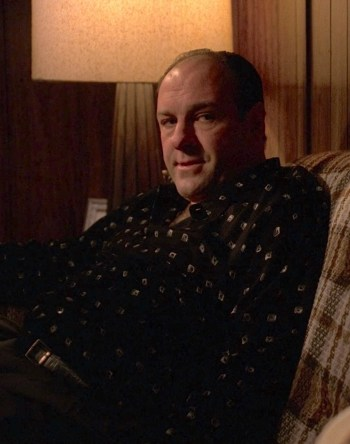 "James Gandolfini as Tony Soprano on The Sopranos (Episode 4.04: ""The Weight"")"