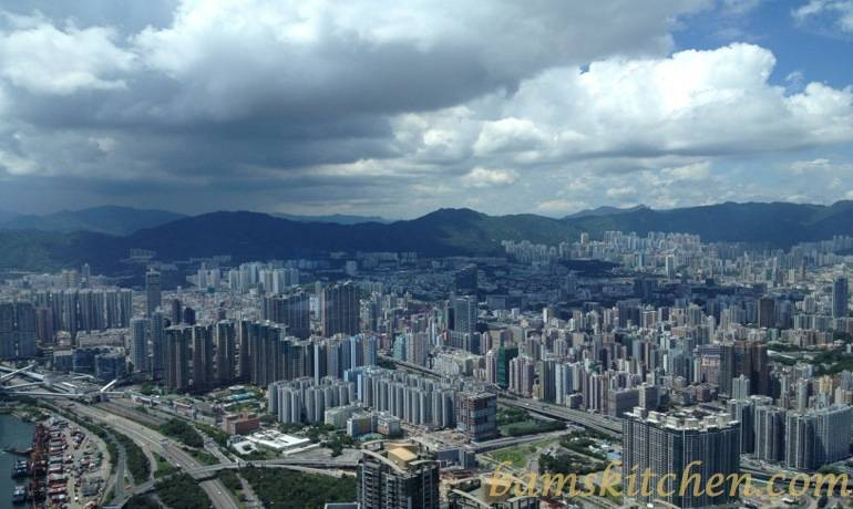 View from 100th floor ICC