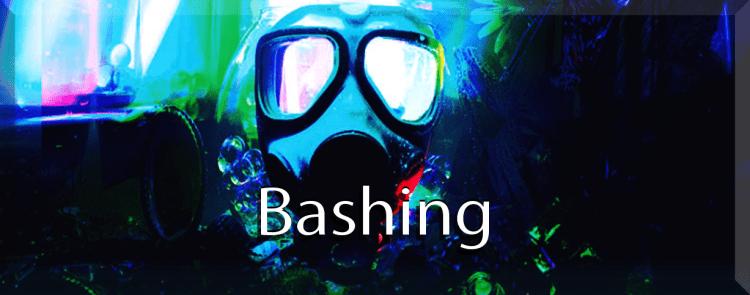 Bashinga