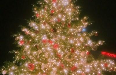新橋いちゃキャバ・JK制服キャバクラ【ハイスクールbanana】 めい クリスマスツリー
