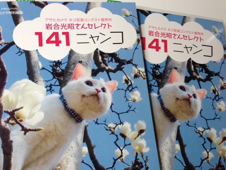 動物写真家【岩合光昭さんセレクト 141ニャンコ】ネコ写真集