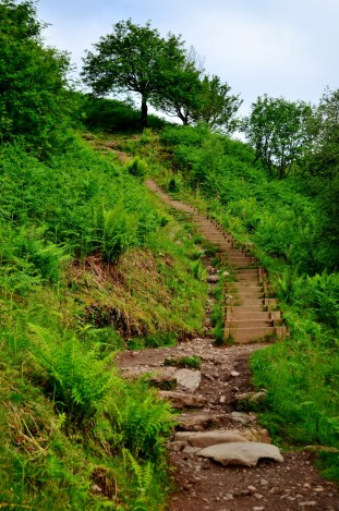 Steps leading to Conic Hill