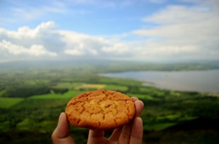 That gorgeous moment when the world stood before a cookie