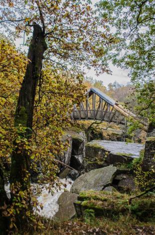Wooden bridge across the falls