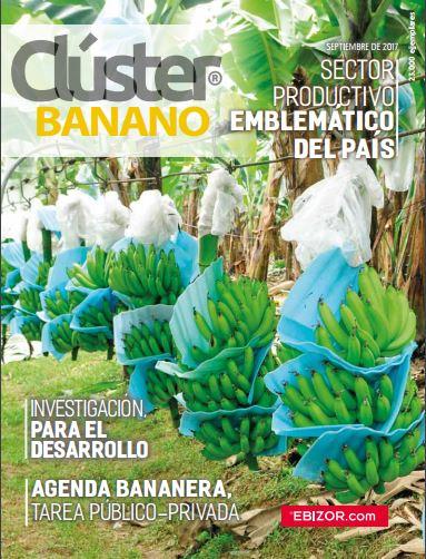 cluster banano impreso