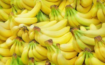 Bioplátanos serán exportados a Europa con certificado digital