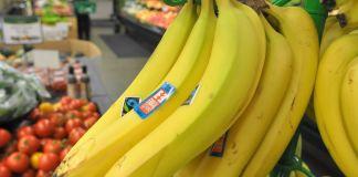 banano organico de ecuador