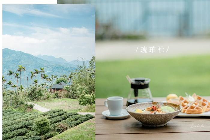嘉義琥珀社咖啡莊園-茶園山林雲霧美景,難忘得獎阿里山咖啡和薑苦茶油雞飯