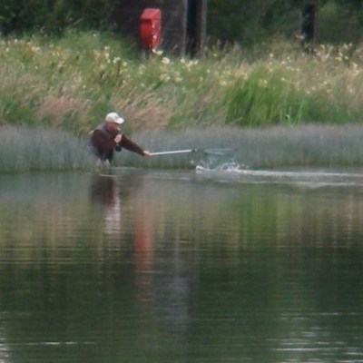 BAC Corbet Lough 29 July 2019 - an angler nets his trout