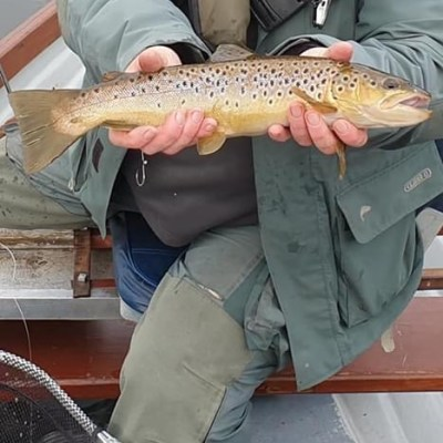 BAC - Stevie Rea with a nice Brownie caught at the Corbet Lough on 29 August 2020