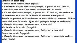 Banc cu Vasile si papagalul special, bancuri cu Vasile 2019