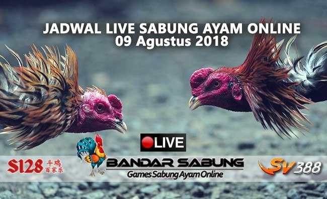 Jadwal Sabung Ayam Online S128 Dan SV388 09 Agustus 2018