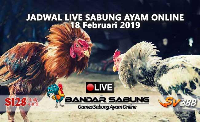 jadwal sabung ayam online s128 dan sv388 18 februari 2019
