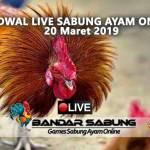 Jadwal Sabung Ayam Online S128 Dan SV388 20 Maret 2019