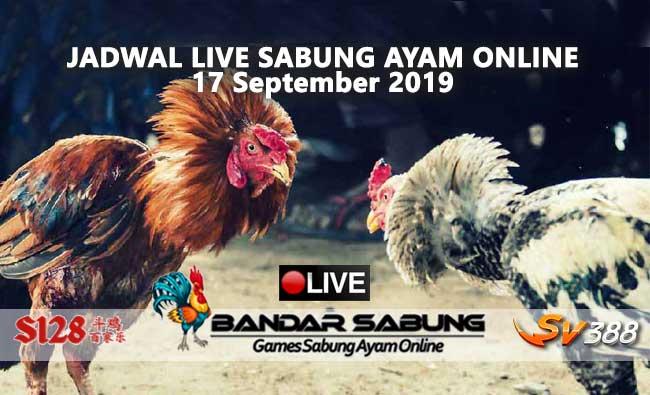 Jadwal Sabung Ayam Online S128 Dan SV388 17 September 2019