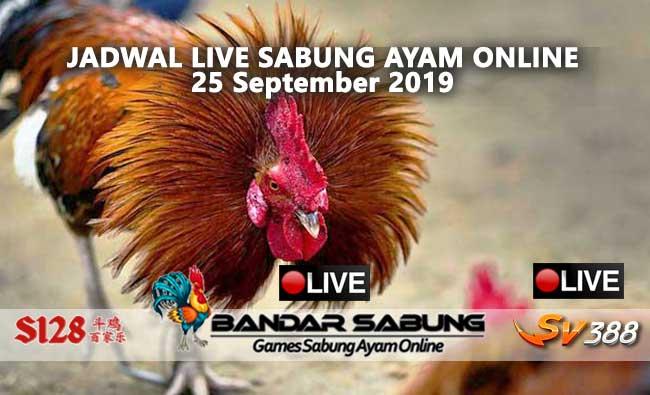 Jadwal Sabung Ayam Online S128 Dan SV388 25 September 2019