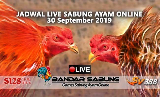 Jadwal Sabung Ayam Online S128 Dan SV388 30 September 2019