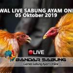 Jadwal Sabung Ayam Online S128 Dan SV388 05 Oktober 2019