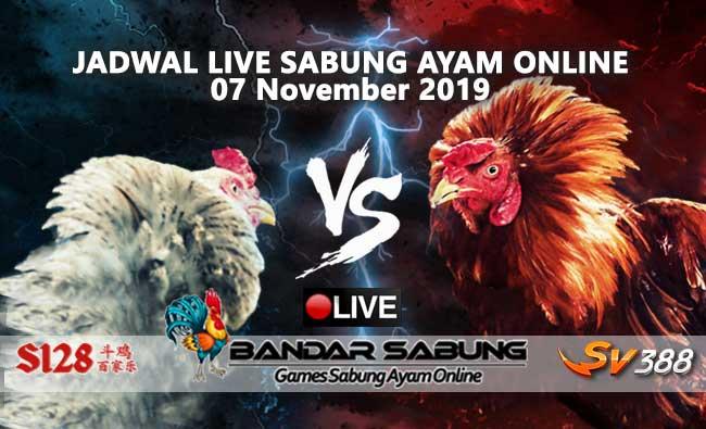 Jadwal Sabung Ayam Online S128 Dan SV388 07 November 2019