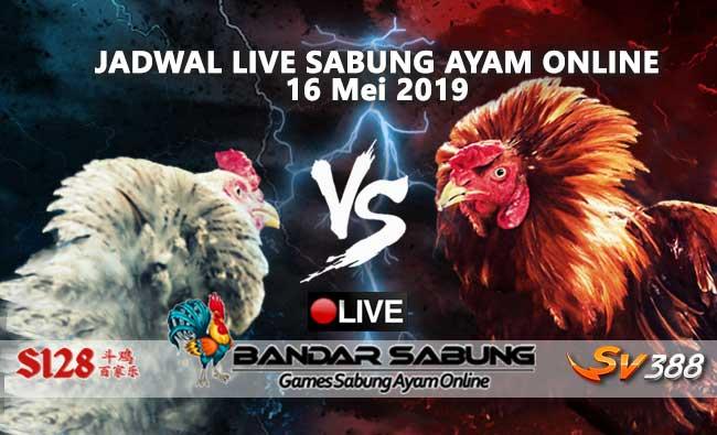 Jadwal Sabung Ayam Online S128 Dan SV388 16 Mei 2019