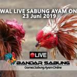 Jadwal Sabung Ayam Online S128 Dan SV388 23 Juni 2019