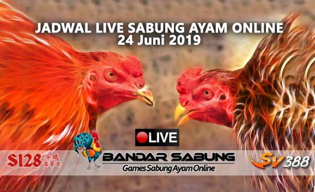 Jadwal Sabung Ayam Online S128 Dan SV388 24 Juni 2019
