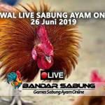 Jadwal Sabung Ayam Online S128 Dan SV388 26 Juni 2019