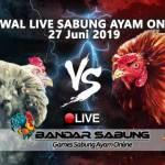 Jadwal Sabung Ayam Online S128 Dan SV388 27 Juni 2019