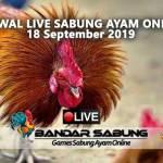 Jadwal Sabung Ayam Online S128 Dan SV388 18 September 2019