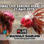 Jadwal Sabung Ayam Online S128 Dan SV388 21 April 2019