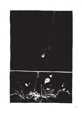 o-astragalo-pagina11