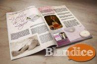 blandice2_2