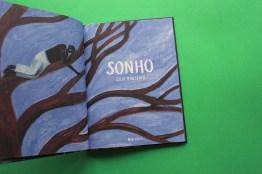 sonho2_0