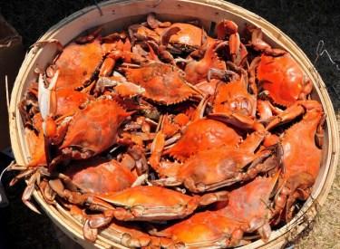 We sell crab seasoning!