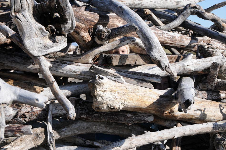 driftwood hiding
