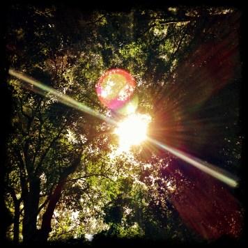 Matahari pun hanya mengintip