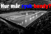 """""""Skrynnik the architect for bandy collapse in Russia"""""""