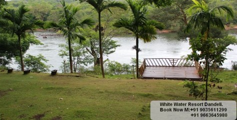 Resort dandeli