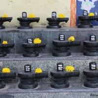 Bangalore to Kotilingeshwara Temple