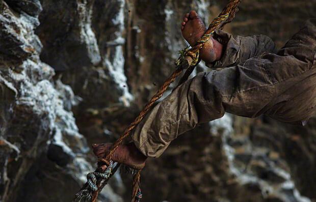 foto kaki kuat dan kokoh pemburu madu
