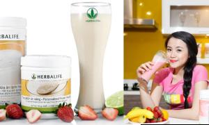 Sữa bột bột Protein Herbalife giảm cân giá bao nhiêu tiền?