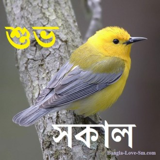 Quote For Everyone Funny Winter Quotes In Bengali