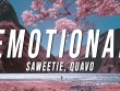 Emotional-Full-Song-Lyrics-By-Saweetie-ACY