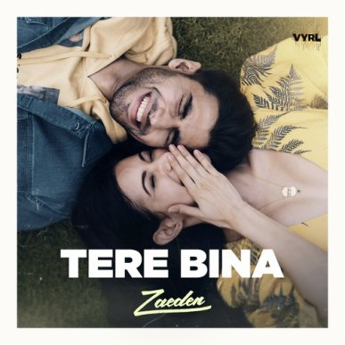 Tere Bina Full Lyrics Song - Zaeden
