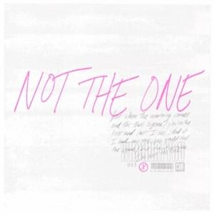 Not The One Lyrics - Stages - WhoHurtYou