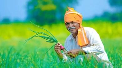 Photo of কৃষকদের আধার ভিত্তিক ডিজিটাল ডাটাবেস চালু করবে মোদি সরকার