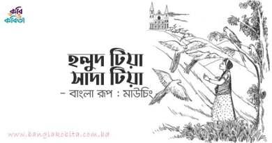 হলুদ টিয়া সাদা টিয়া (মারমা রূপকথা) - বাংলা রূপ: মাউচিং
